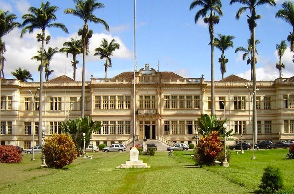 A photo of a lawn in front of a mansion with palm trees