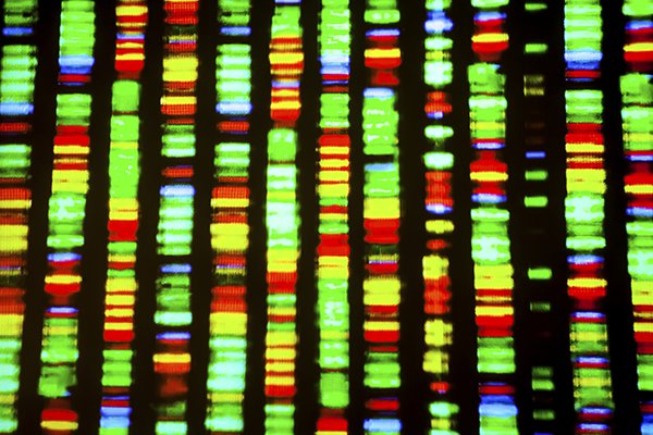 A closeup photo of a DNA sequence representation