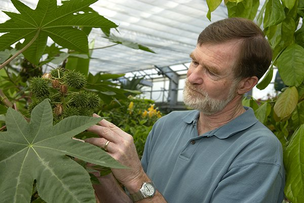 A closeup of John Browse working with plants