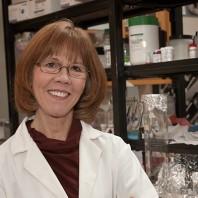 A closeup of Sue Ritter in a lab