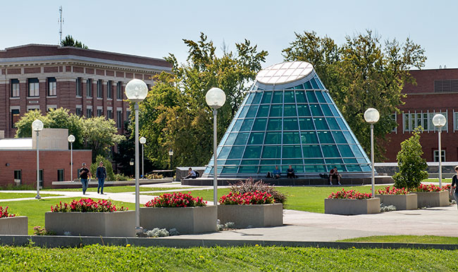 Terrell Library Dome