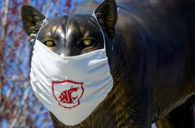 Cougar Pride Statue wearing Cougar Mask