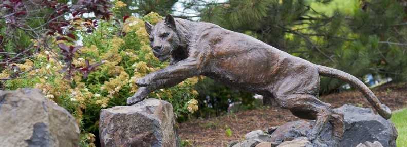 Photo of Cougar sculpture on campus