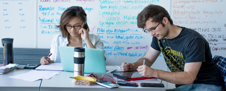 Two students studying at a table in front of a whiteboard