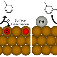 Diagram showing that Palladium prevents the deactivation of an iron catalyst in the reaction that removes oxygen from biofuel feedstock
