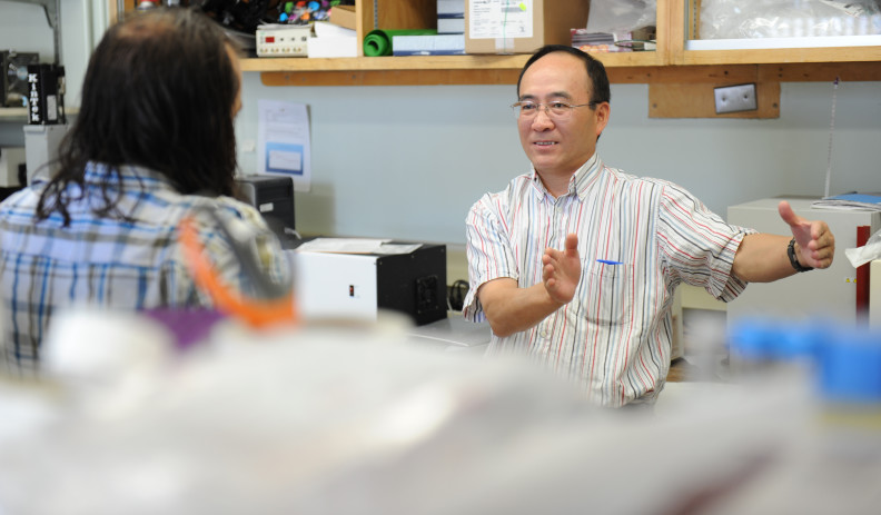 Dr. Wen-ji Dong working with student in the lab