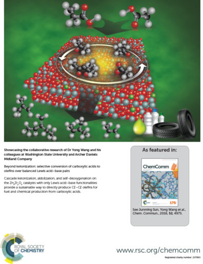 ChemComm Journal cover (As featured in ChemComm; Royal Society of Chemistry; www.rsc.org/chemcomm)