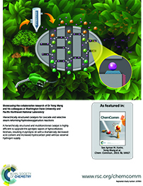 ChemComm Magazine - featured article  (As featured in ChemComm; Royal Society of Chemistry; www.rsc.org/chemcomm)