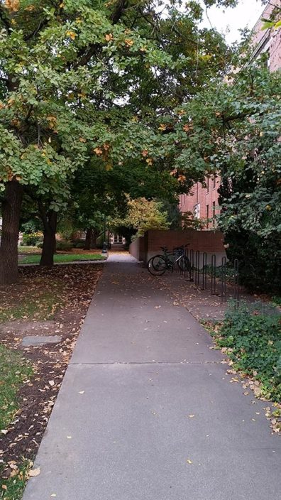 sidewalk in front of WSU Voiland School of Chemical Engineering and Bioengineering