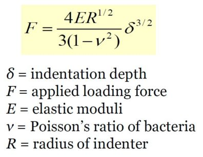 Equation with indentation depth, applied loading force, elastic moduli, Poisson's ratio of bacteria, and radius of indenter