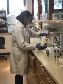 Olivia working in the lab