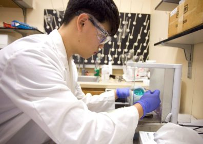Pullman High School junior Hongyeoul Park, right, works in Dr. Su Ha's lab under the supervision of Washington State University doctoral student Jake Gray in Pullman.