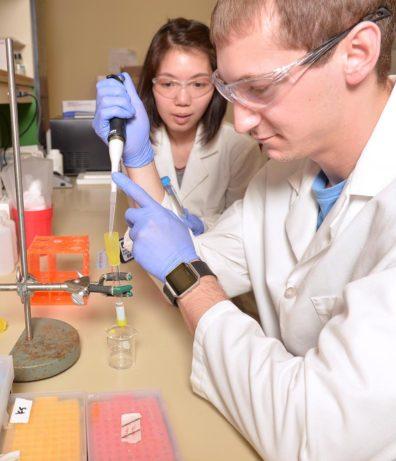 Students working in Alla Kostyukova's lab