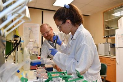 Dr. Tolkatchev teaches REU student Karla Bonic to run DNA electrophoresis