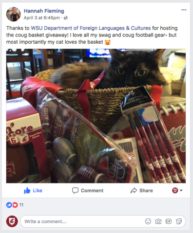The Winner's Cat is lounging in the Basket for a FB Post Thanking DFLC for the Basket for her Cat