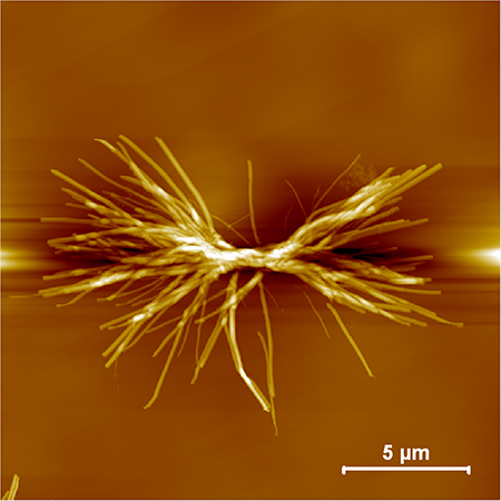 Hyperbranched crystalline nanostructure