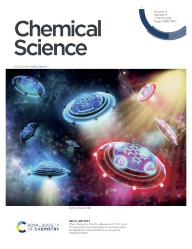 CS Front Cover for Li Website