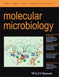 Molecular Microbiology Book