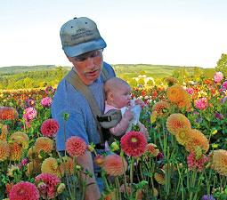 Dan Pearson and his daughter Alyssa pick flowers for the farmer's market. Courtesy Mieke Pearson.