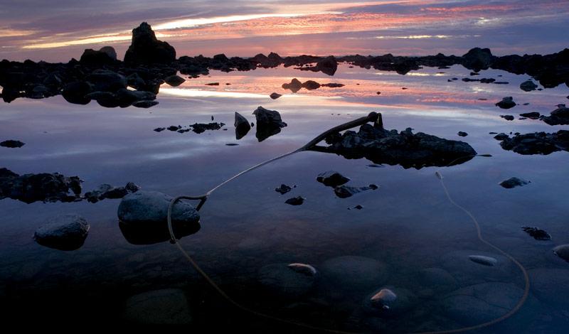 Ozette, on the Washington coast