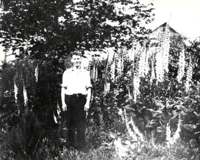 Carl English amid thriving plants in one of his test gardens. Photo courtesy U.S. Army Corps of Engineers.