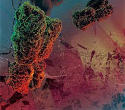 To Err is Human - Chromosome image courtesy Ceska/Background art by DZGNBio
