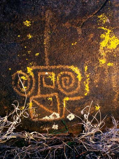 Native American petroglyph in central Arizona, approximately 1000-1200 CE. Photo by Ekkehart Malotki, Professor Emeritus of Languages at Northern Arizona University. Ellen Dissanayake is currently collaborating with Malotki and others to investigate the oldest rock art paintings and engravings in the American West.