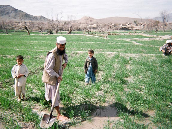 A man and children farming to stabilize their community in Laghman.