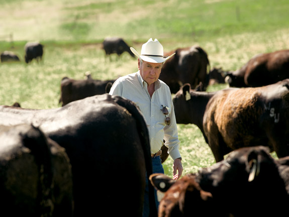 'I don't think you can have a sustainable system without integrating animals with plants,' says WSU Extension beef specialist Don Nelson. 'That is the way nature intended it.' Nelson advocates a decision-making process called holistic management, which focuses on the functioning of ecosystem processes--including community dynamics--when managing natural resources such as rangeland.