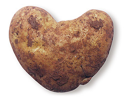 Photo of heart-shaped potato by Michael Hopkinsii