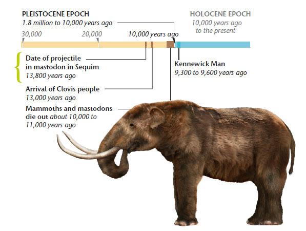 Mastodon timeline