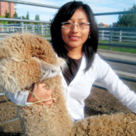 Yessenia Picha with an alpaca at WSU
