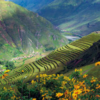 Terraces in the Andes