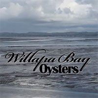 Willapa Bay Oysters video