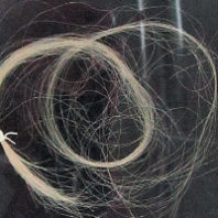 Narcissa Whitman's hair