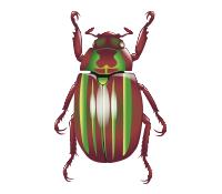 Chrysina quetzalcoatli