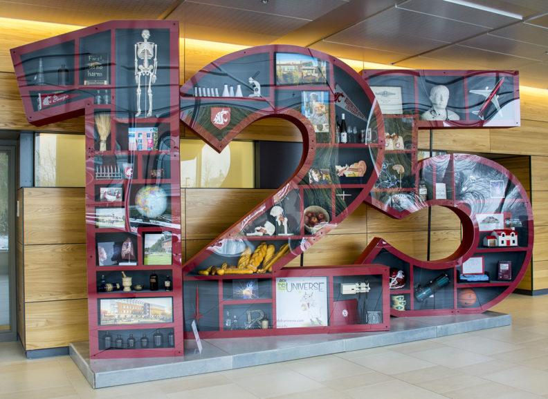 WSU 125 display