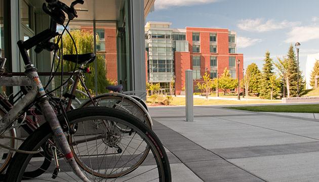 Bikes, by Zach Mazur