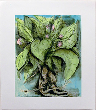THE MANDRAKE by Jim Dine