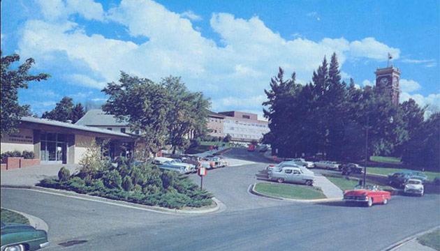 Bookie circa 1956