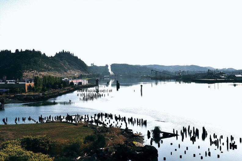 Wishkah and Chehalis Rivers