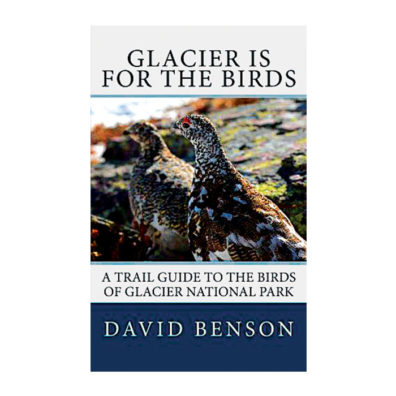 Glacier is for the Birds: A Trail Guide to the Birds of Glacier National Park cover