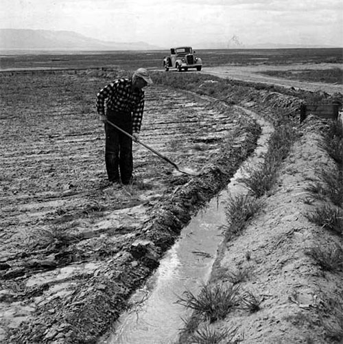 Farmer in the 50s on the Columbia Basin Project