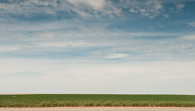 Irrigated fields in the Columbia Basin. Photo Zach Mazur.