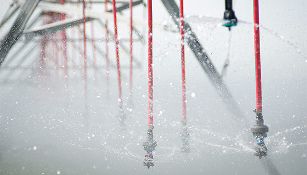 Sprinklers in the Columbia Basin. Photo Zach Mazur