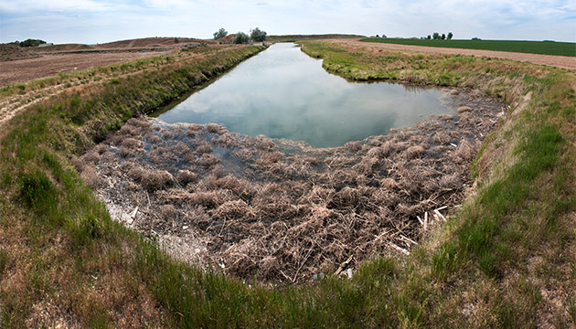The termination point of the East Low Canal of the Columbia Basin Project. Photo Zach Mazur