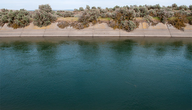 Central section of the The East Low Canal of the Columbia Basin Project. Photo Zach Mazur