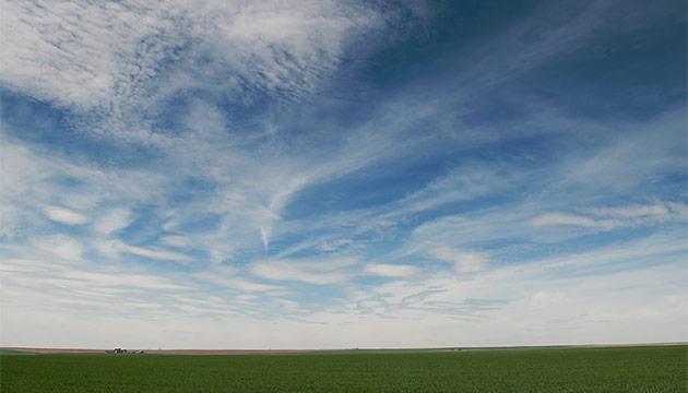 Irrigated field. Photo Zach Mazur.