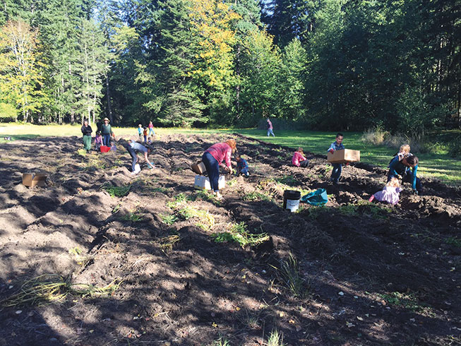 Food recovery in Clallam County