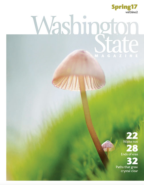 Washington State Magazine Spring 2017 cover